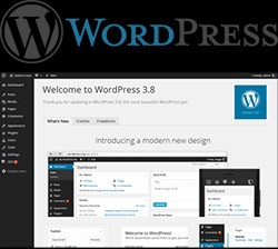 Web design and WordPress themes