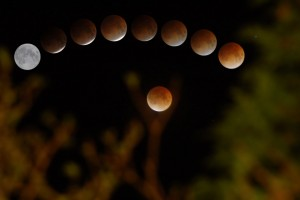 lunar-eclipse-feb-2008