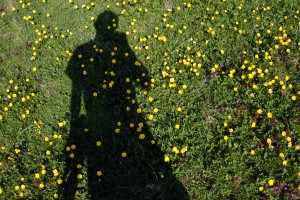 Me in Buttercup Field